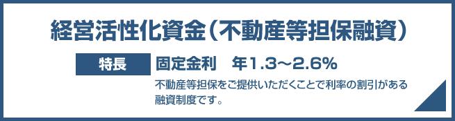経営活性化資金(不動産等担保融資)